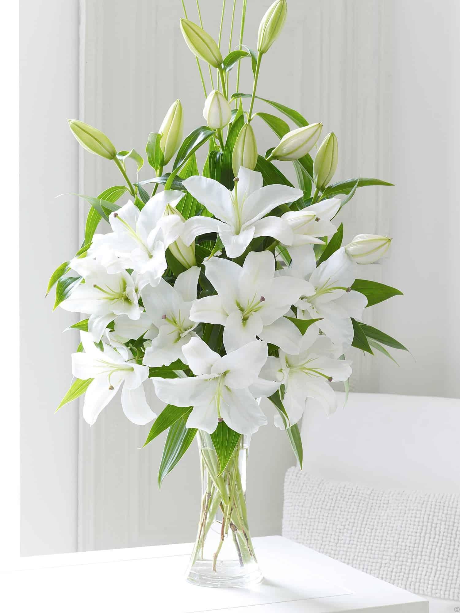 Oriental lily special flower shop lilys mightylinksfo